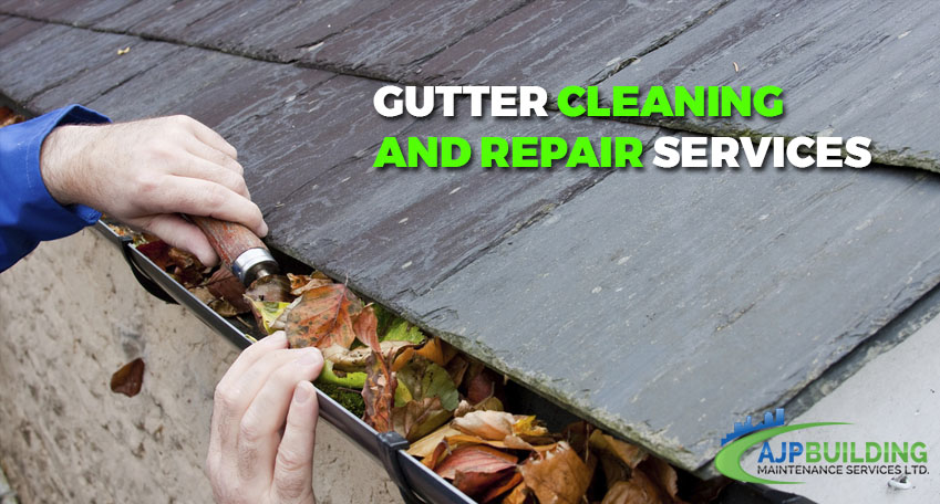 Gutter Cleaning and Repair Services